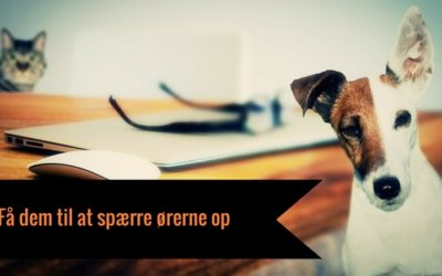 Du skal bruge keywords, carewords og powerwords i tekst til inbound marketing