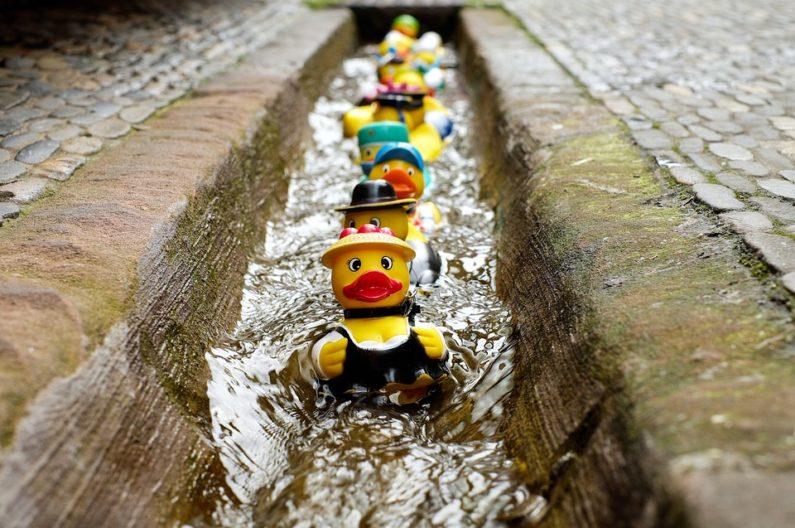 rubber-duck-1401225_960_720