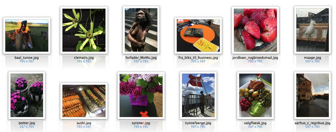 Billeder til WordPress og DIVI – størrelse, filnavne og andre nødvendige og nyttige fif