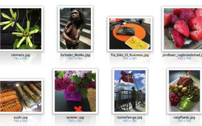 Billeder til WordPress og DIVI – størrelse, filnavne og andre nyttige fif