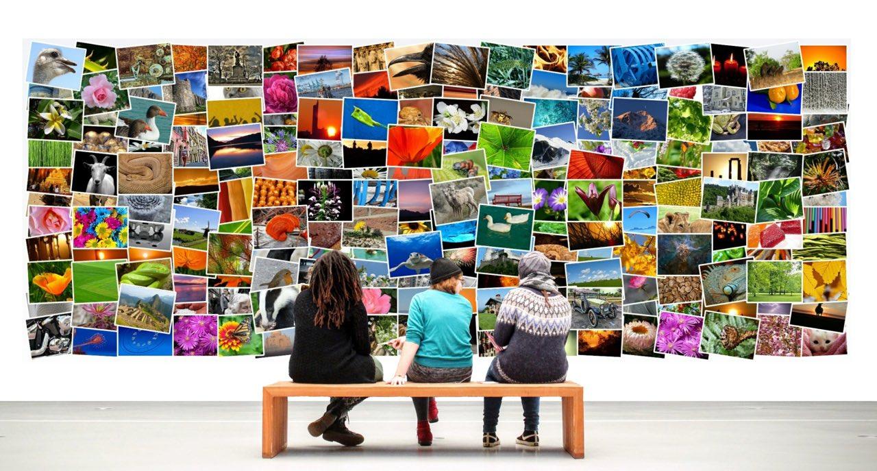 Find din stilguide ved at lave mood board til dit website - WEBwoman