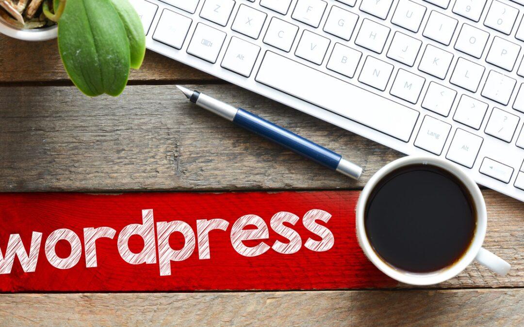 Hvor meget kan du selv lave på din WordPress hjemmeside